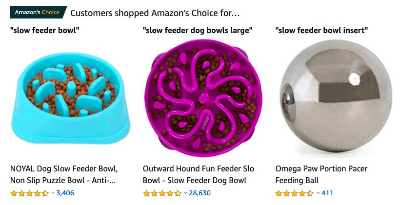 trending slow feeder bowls