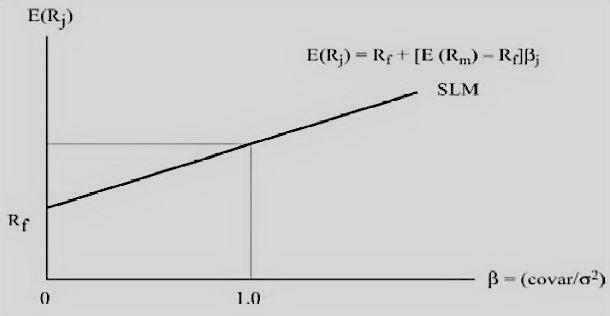 capital asset pricing model capm